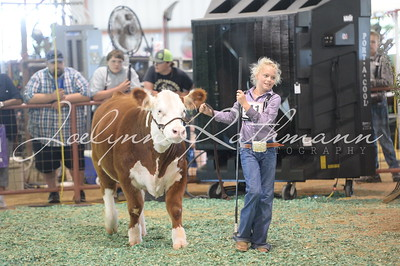 Showmanship - Junior