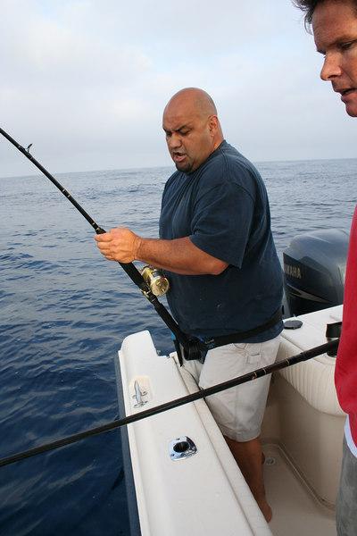 fish  2350.jpg