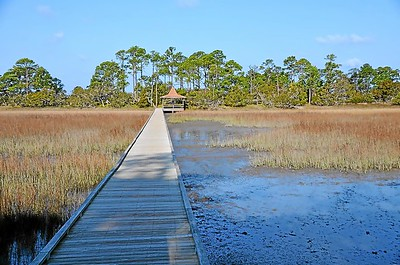 Beaufort-SC-Hunting-Island-State-Park-contd