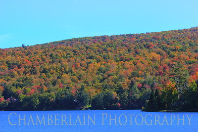 Fall in Vermont -2019