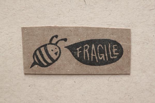 Fragile Bee.JPG
