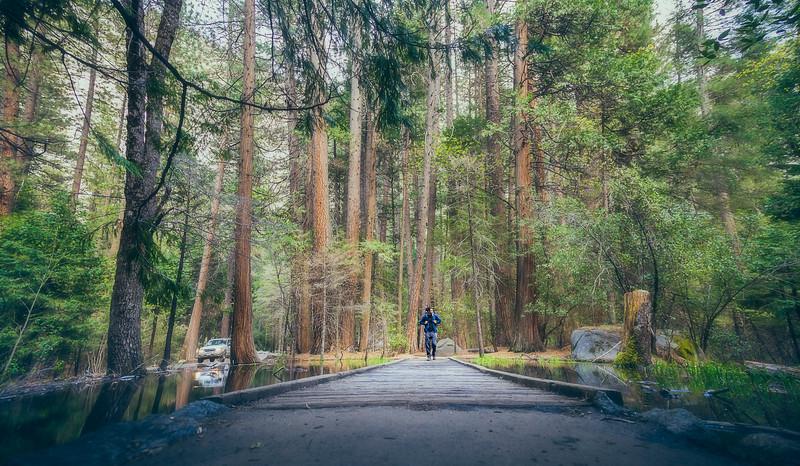 04_24_2017_Yosemite_TrailAyush.jpg
