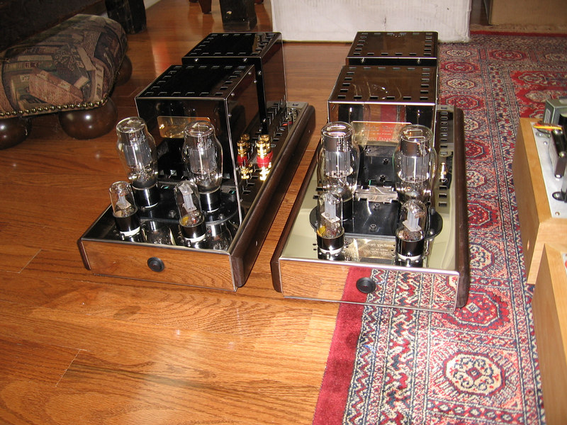 Audio Mirror 20 watt 6AS7G parallel SET monoblocks. These are built on the same chassis as the 40 watt 6C33C amps. http://www.audiomirror.com/