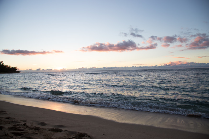 Hawaii-North Shore 2017-9035.jpg