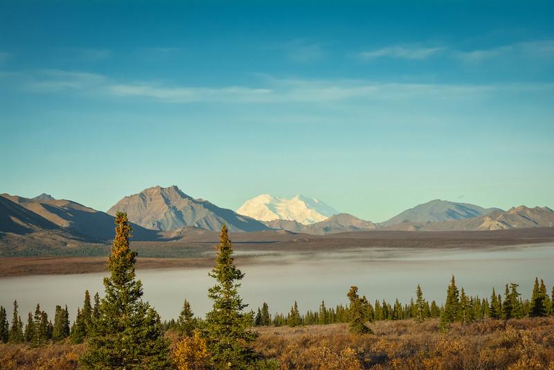 Denali-National-Park-53.jpg
