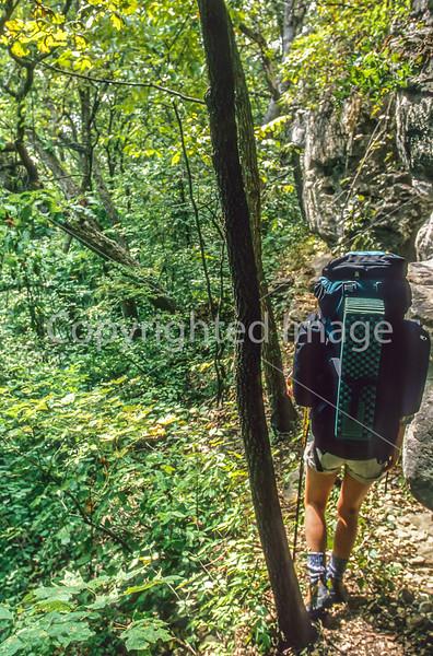 Terrain Magazine -- Ozark Trail
