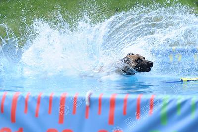 4547 Saturday Splash 4