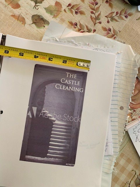 book page castle cleaning.jpg