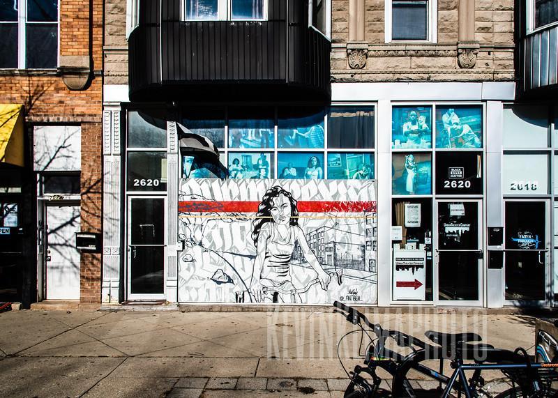Humboldt Park Street Art