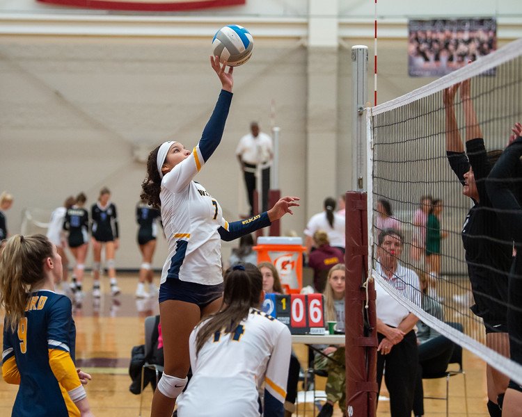 OHS VBall at Seaholm Tourney 10 26 2019-1242.jpg