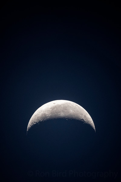 7.15.20 - Luna