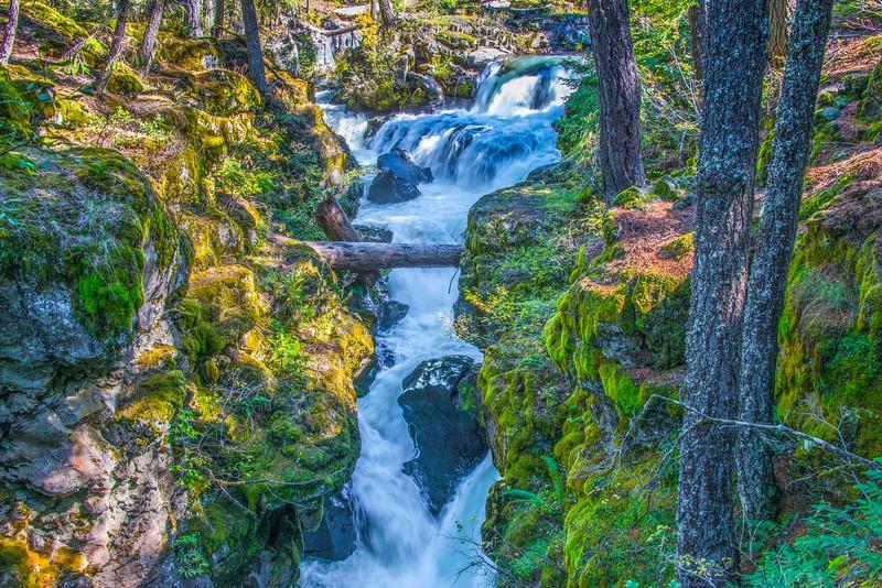 Rogue River-5.jpg