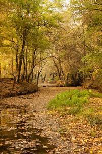 Banita Creek109