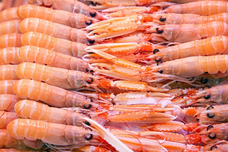 Crawfish, Boqueria market, town of Barcelona, autonomous commnunity of Catalonia, northeastern Spain