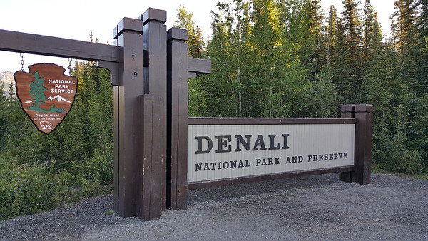 Day 24 - July 13, 2016 - Denali National Park