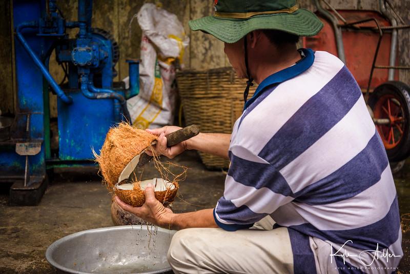 Ben Tre Village is famous for its coconut plantations.