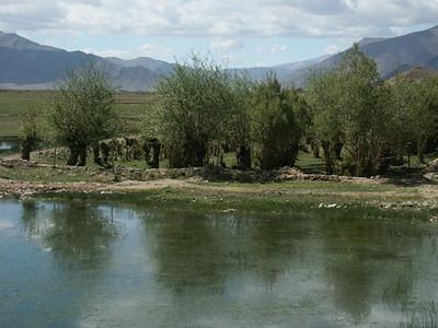 tibet-kailash-009.jpg