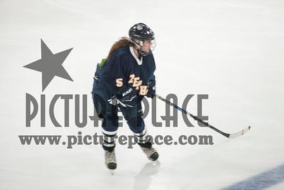 MHS Girls Hockey Action MHS vs. Simley