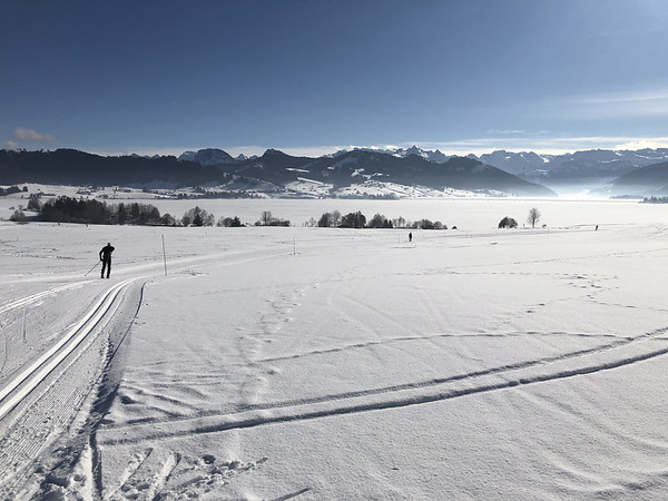 View to the Alps and Sihlsee