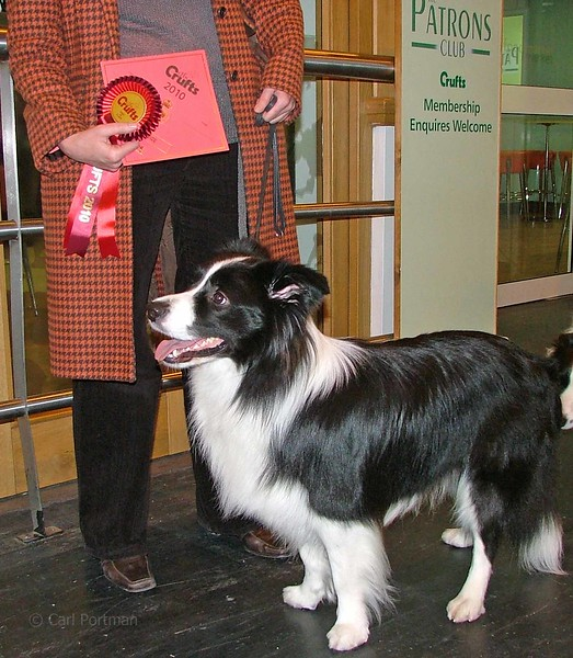 Crufts 2010 (29) - Copy.JPG