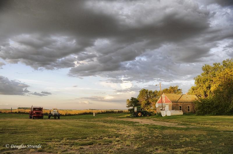 2010   Early Morning Farmyard