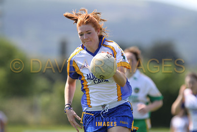 Wicklow v Offaly 2011