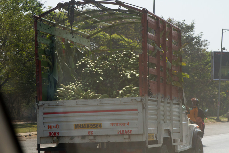 India_2012Feb-4600.jpg