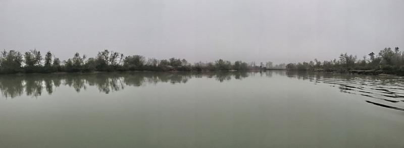 Wetlands Golden