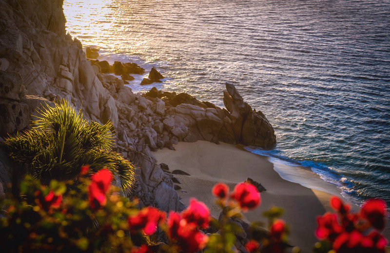 Colorful Cabo Sunrise