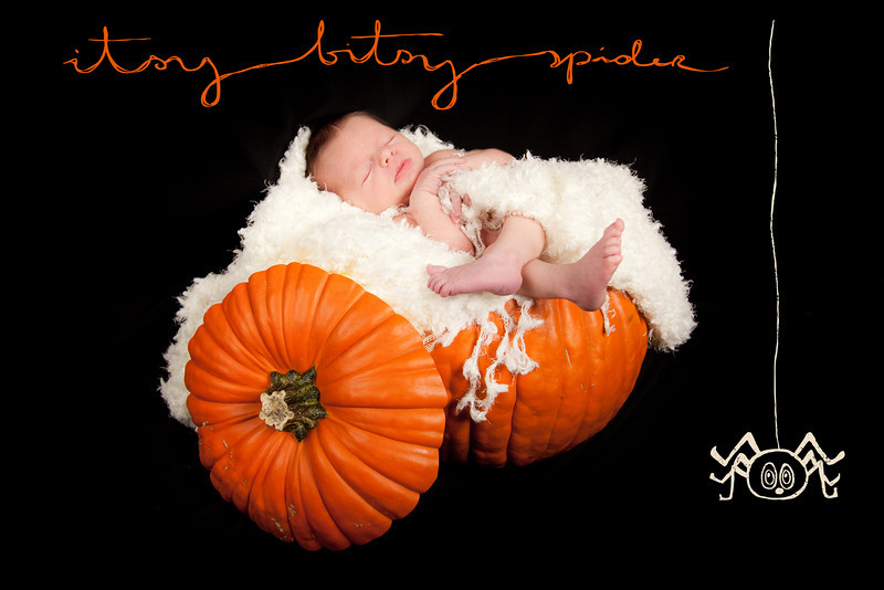 Sweet Pumkin Baby