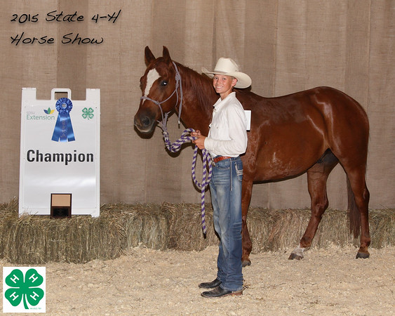 2015 SD State 4-H Horse Show Event Winners