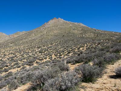 Mayan Peak - Southern Sierra 3.13.15