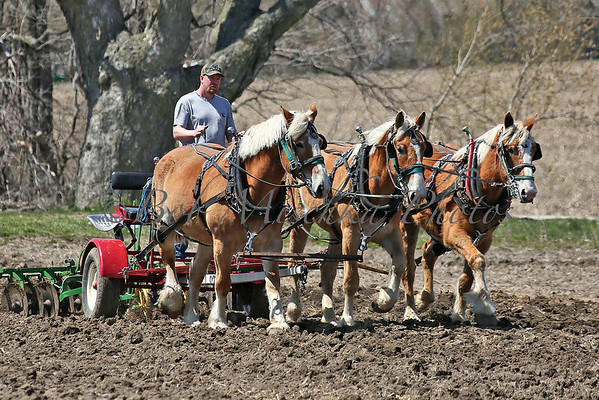 04/26/14  Durrant Plowing Match