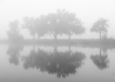 Fog~Sedgwick County Park Sept. 2016