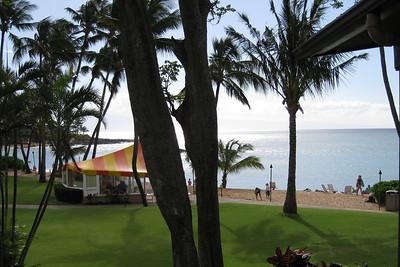 Maui (Feb 2008)