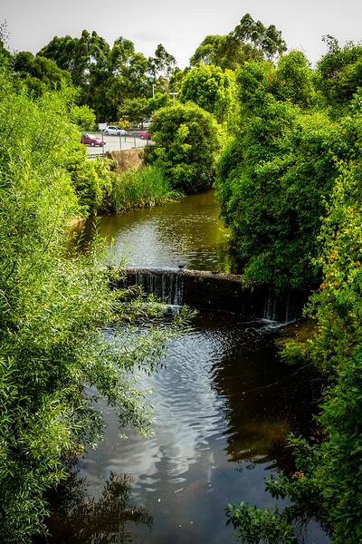 North Parramatta : Woollen Mill Weir