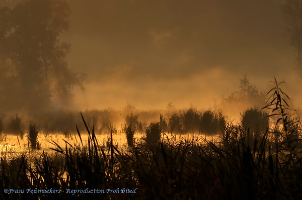 Landschappen, Landscapes, Paysages, Landschaft