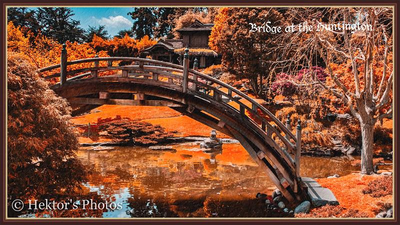 Japanese Bridge-1.jpg