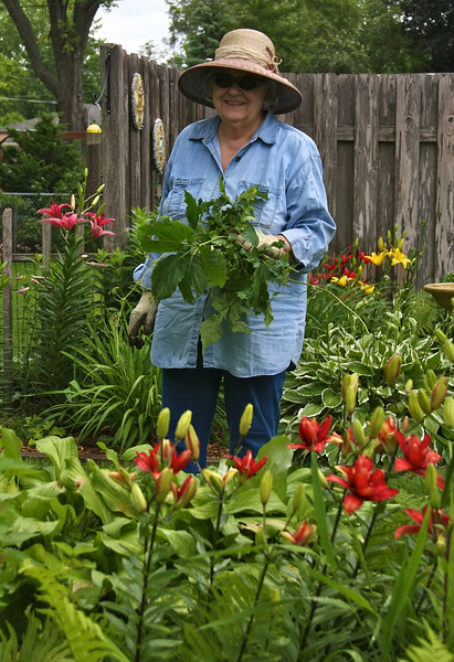 MOMS GARDEN JUNE 2010  1585.jpg