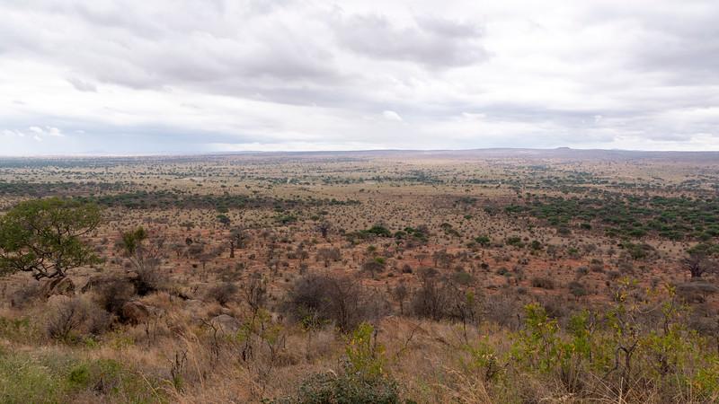 Tanzania-Tarangire-National-Park-Lemala-Mpingo-Ridge-01.jpg