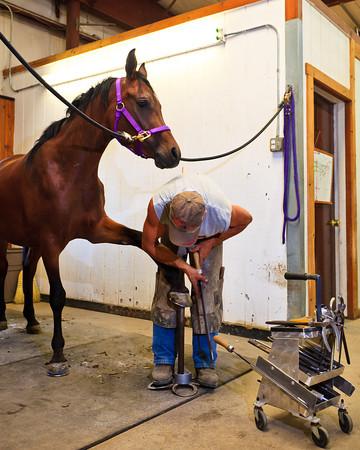 Around the Barn 2011