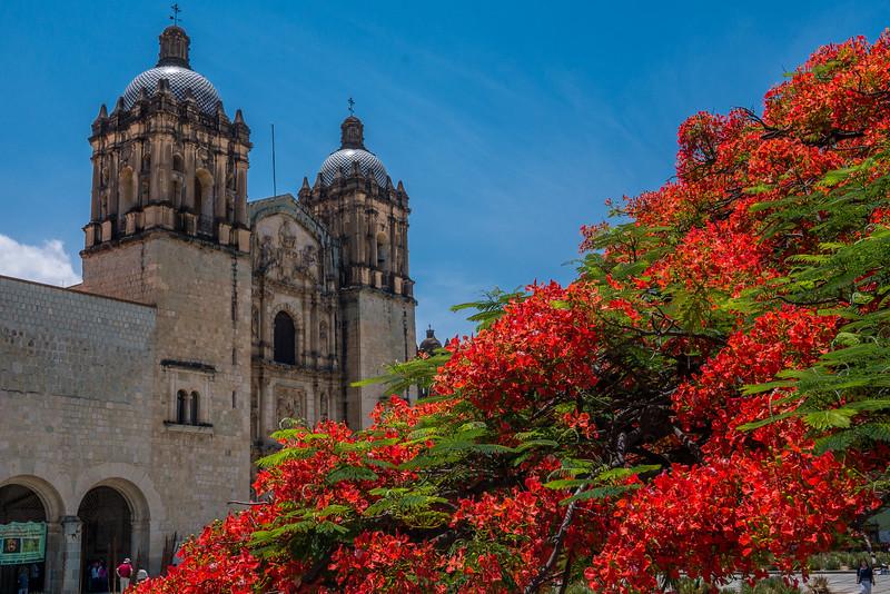 Oaxaca-Centro-9.jpg