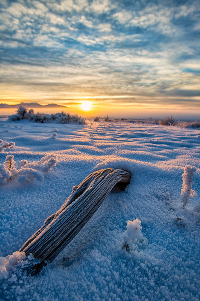 Frozen Sunrise