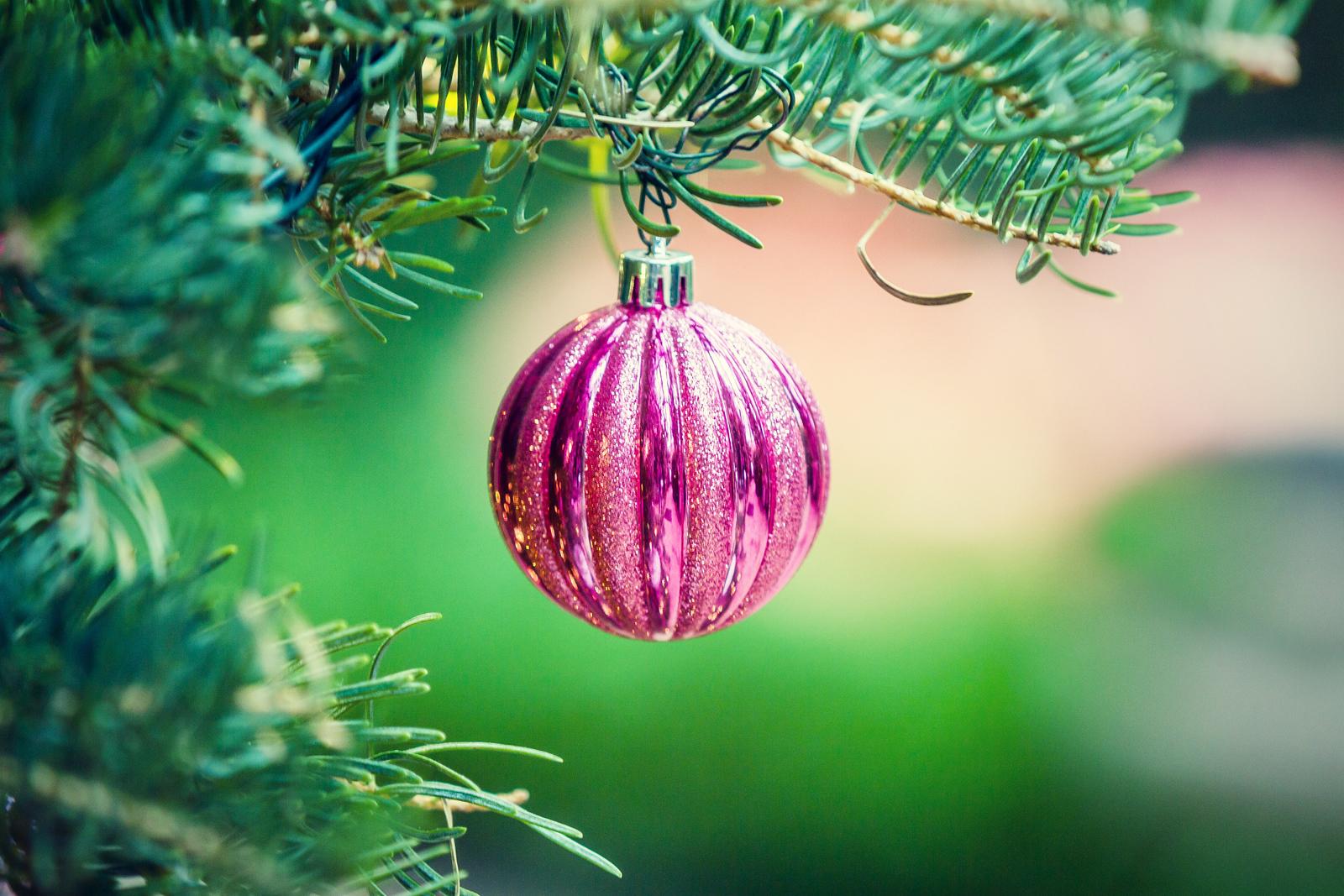 圣诞树上的自拍