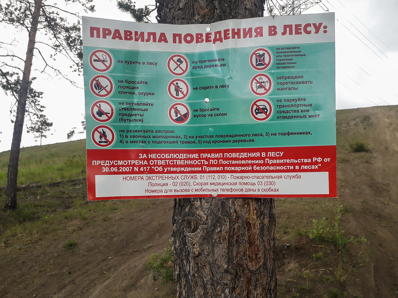 Code of Conduct for the Forest (right outside of the city)