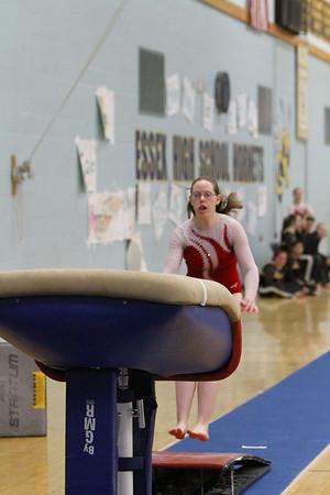 gymnastics states2010