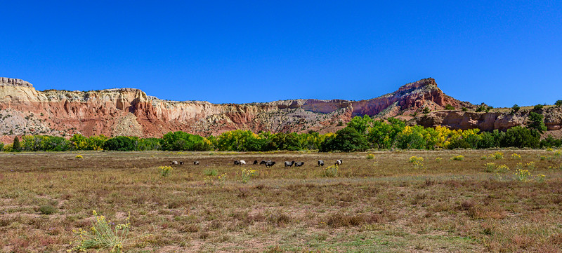 Ghost Ranch - Abiquiu, New Mexico - 2019