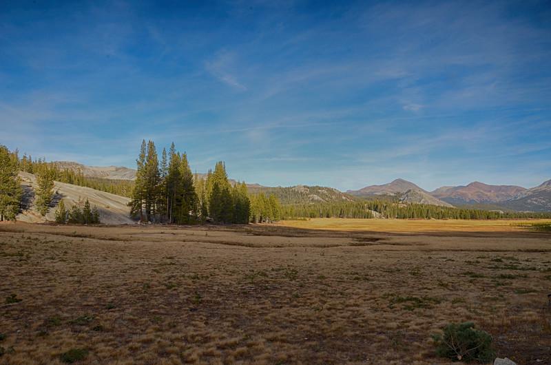 Sierra7.jpg