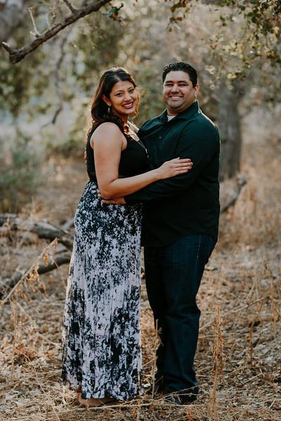 Swapna and Atul Engagement-38.jpg