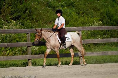 Bradford County Roundup Hunter under Saddle Ponies